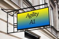 Agility Klasse 1
