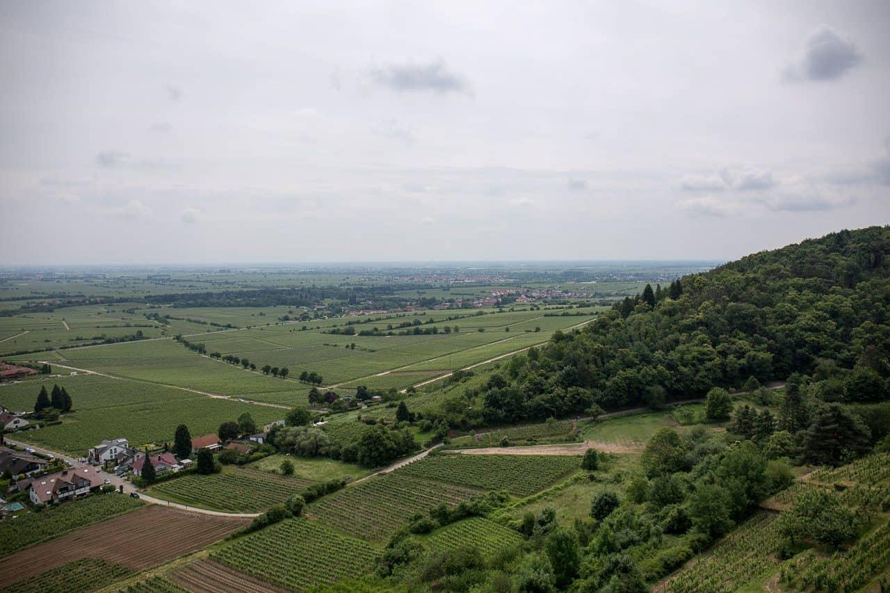 Aussicht von der Wachtenburg (nach Süden)